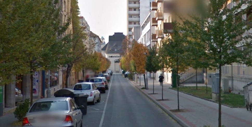 15 életképtelen fát vágnak ki a Szigligeti utcában pénteken