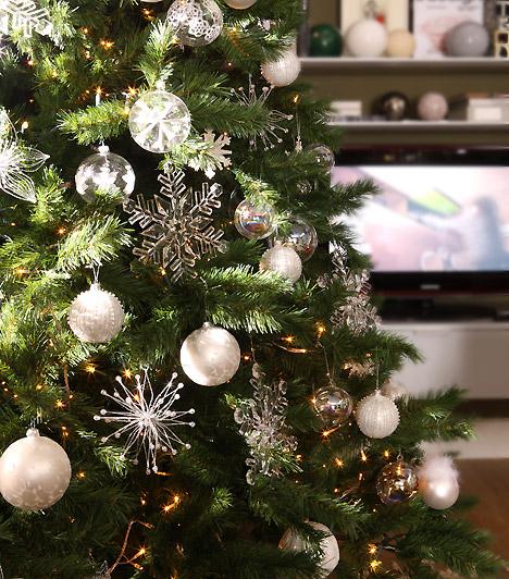 Ön tudja, hol születnek a karácsonyfák?