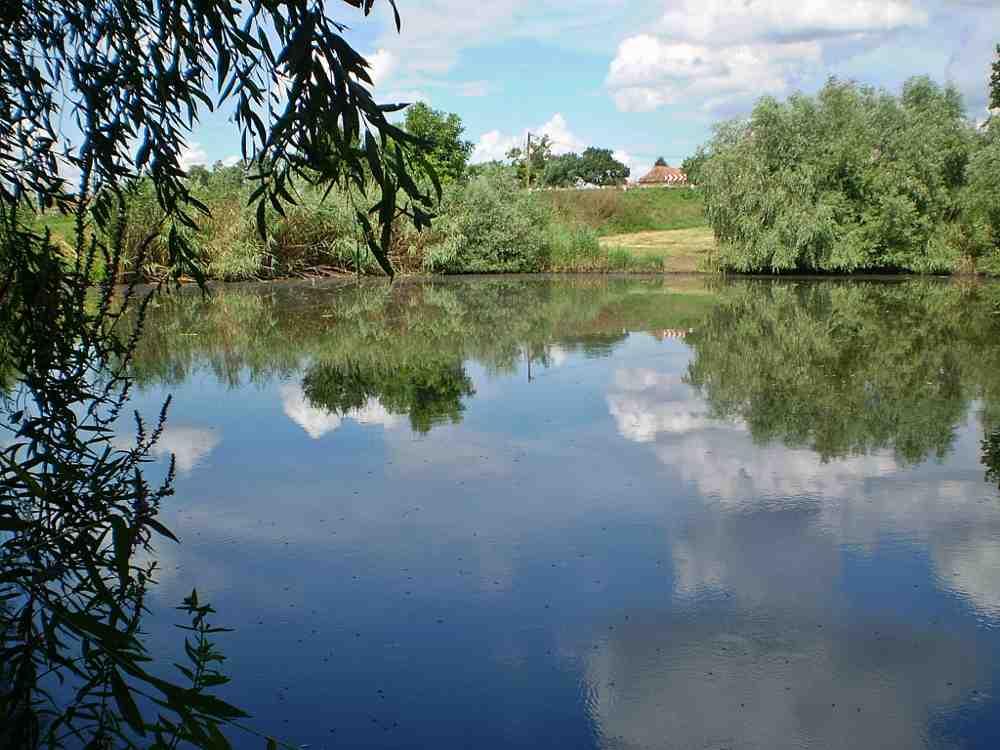 c25b276366 ... tárgyalást követően a tó kezelője, a Közép-Tisza-vidéki Vízügyi  Igazgatóság (Kötivizig) - mondta el Lovas Attila vízügyi igazgató pénteken  a MTI-nek.